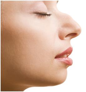隆鼻模拟器