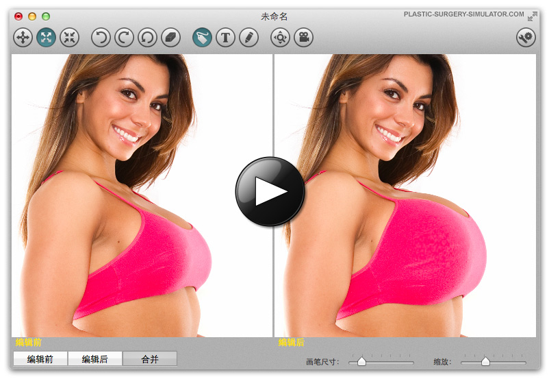 整容模拟器 Mac 版