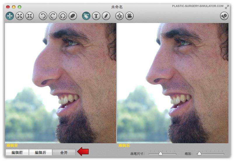 整容模拟器 Mac 版选项卡